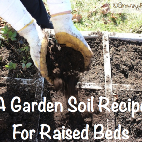 How To Make An Easy Organic Garden Soil | WholeLifestyleNutrition.com