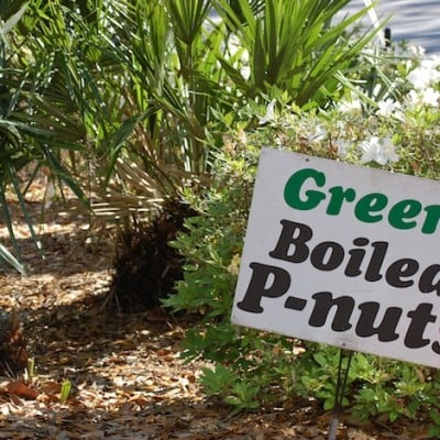 Countrywide Farmers Markets ~ A Peak into Florida And A Green Boiled Peanuts Recipe
