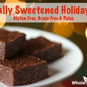 Holiday Fudge Recipe | WholeLifestyleNutrition.com