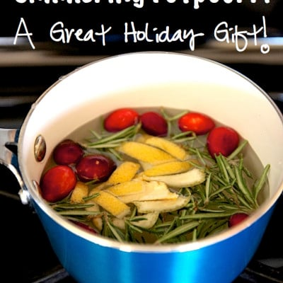 Homemade Simmering Stovetop Potpourri Holiday Edition {A Great Holiday Gift}!