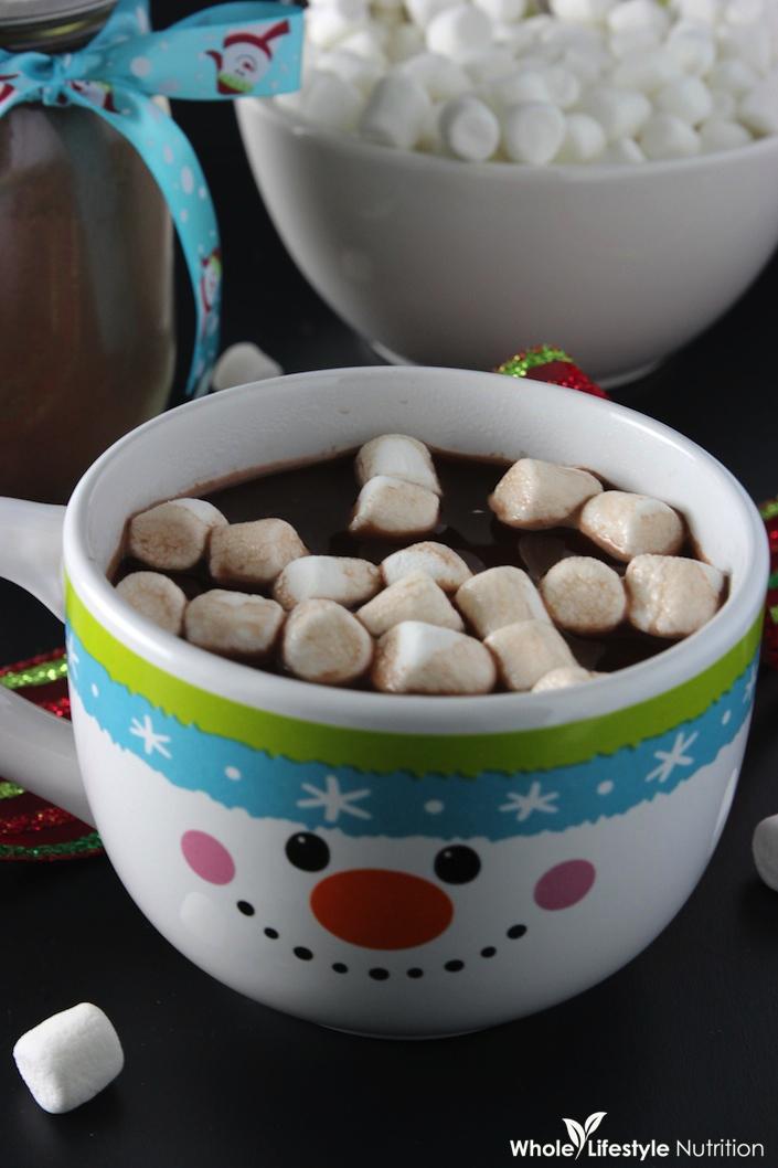 Organic Hot Chocolate Mix Recipe