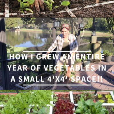How I Grew An Entire Year Of Vegetables In A Small 4′ x 4′ Space!