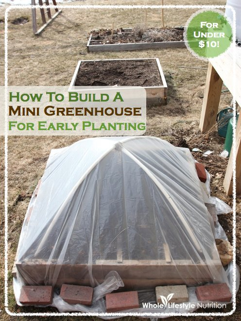 How To Build A Mini Greenhouse For Early Planting | WholeLifestyleNutrition.com