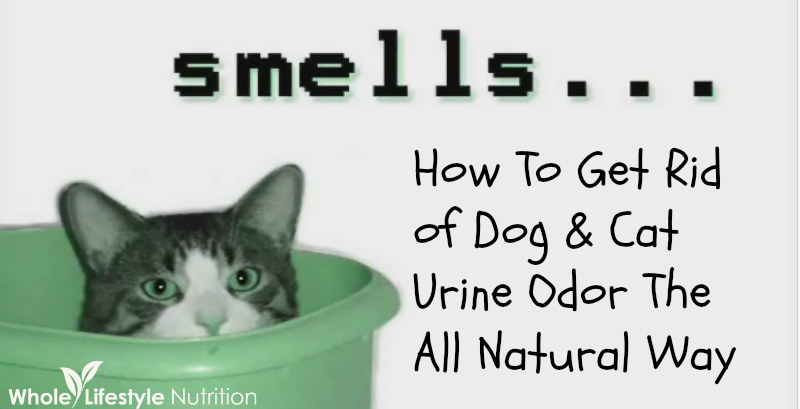 Natural Way To Get Rid Of Urine