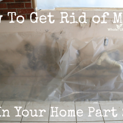 How To Get Rid of Mold In Your Home {Part 2}