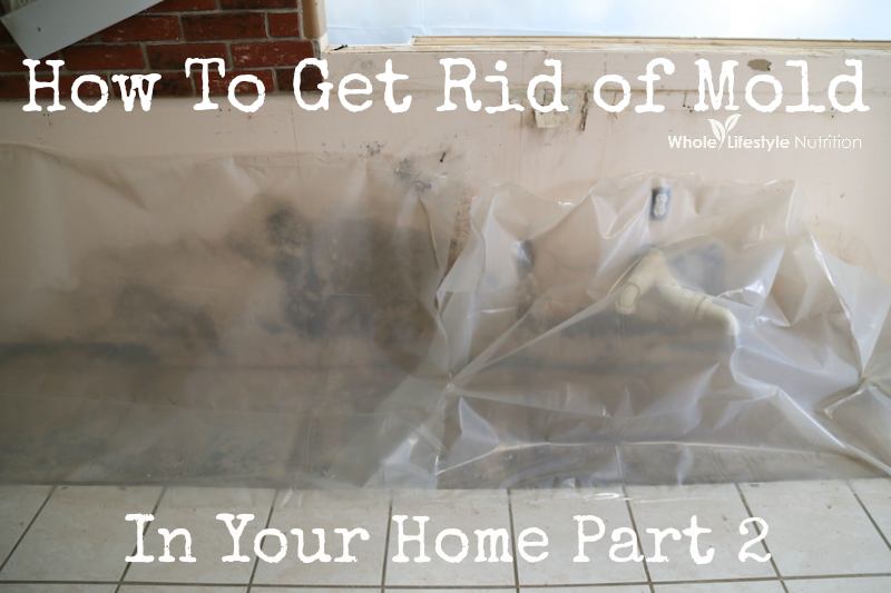 How To Get Rid of Mold In Your Home Part 2