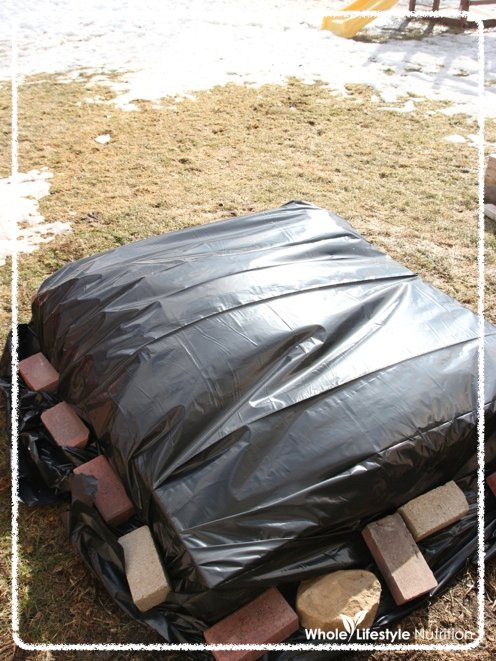 Use Black Plastic Sheeting To Warm Up The Soil For Planting | Off The Grid Hacks | Homesteading Tips