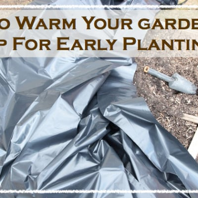 How To Warm Garden Soil Up For Early Planting