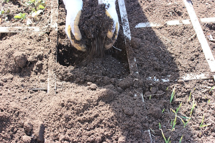 Mix compost with existing soil