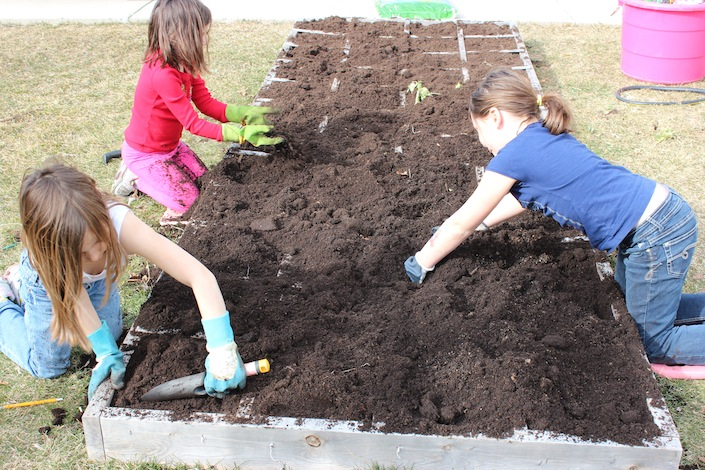 Getting Your Garden Ready For Planting