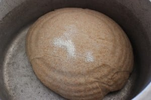 Place dough into hot dutch oven