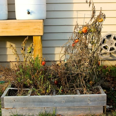 Winterizing Your Organic Garden!