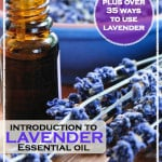 Introduction To Lavender Oil Plus Over 35 Ways To Use It | WholeLifestyleNutrition.com
