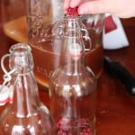 Learn How To Make Kombucha Soda and A Collection of Kombucha Recipes | WholeLifestyleNutrition.com