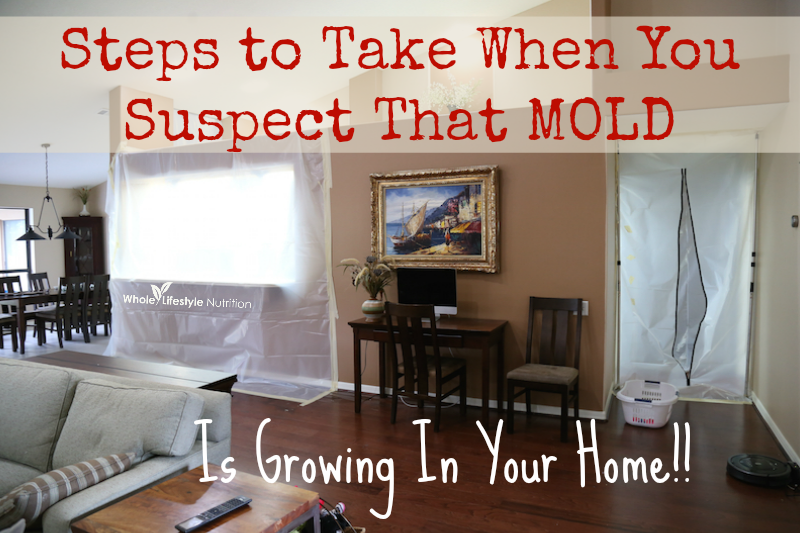 Steps to Take When You Suspect That Mold Is Growing In Your Home!