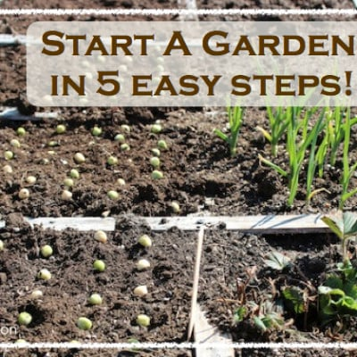 The Most Important Resource Any Gardener Could Ever Have & Start A Garden In 5 Easy Steps!