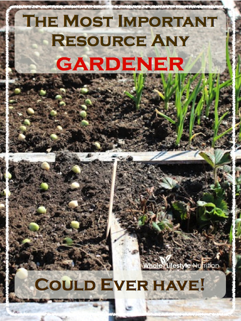 The Most Important Resource Any Gardener Could Ever Have | WholeLifestyleNutrition.com