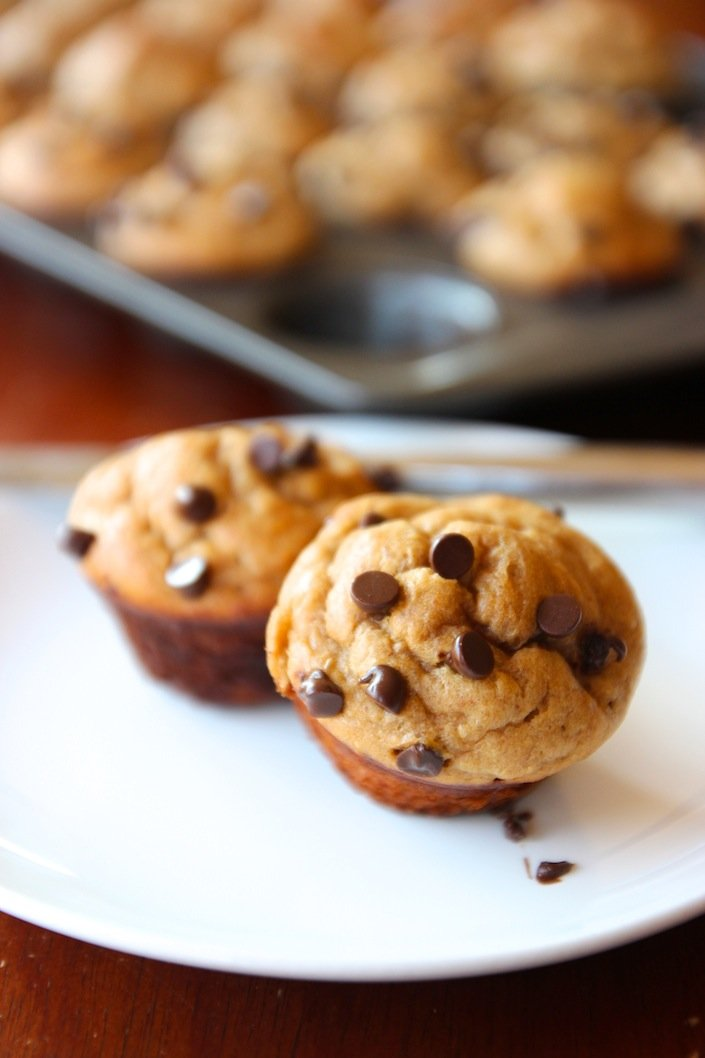 Gluten Free and Grain Free Muffins In 5 Minutes! | WholeLifestyleNutrition.com