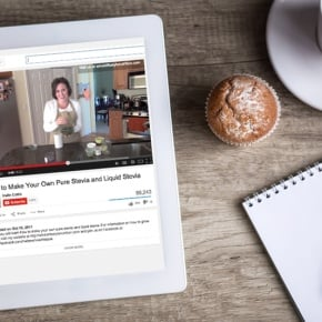 How To Optimize Youtube Videos For SEO | WholeLifestyleNutrition.com