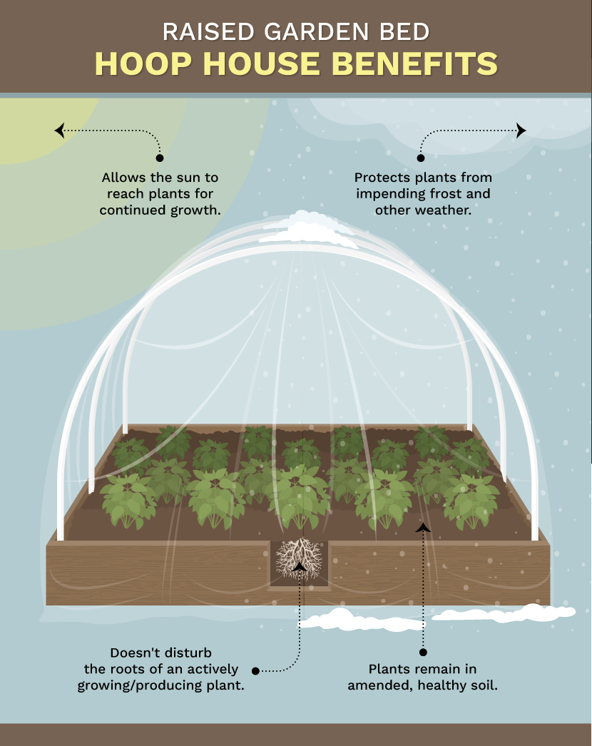 Extend Your Growing Season Earlier or Later With These Simple