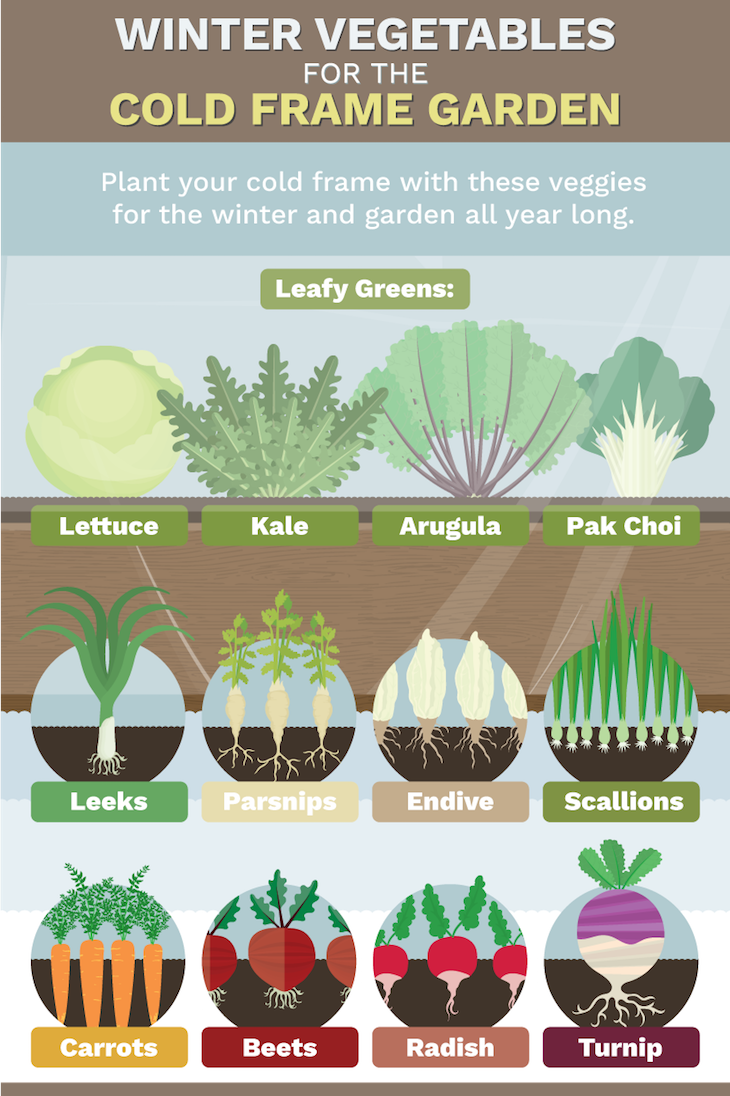 Extend Your Growing Season With These Simple Solutions | WholeLifestyleNutrition.com